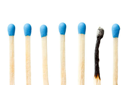 burnt wood:  burnt match and a whole blue matches isolated on a white background