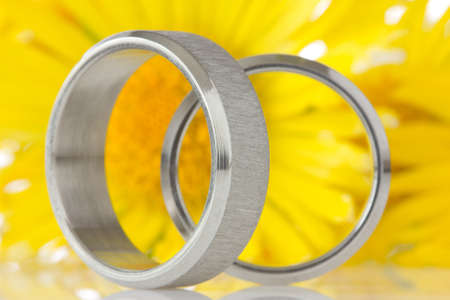 silver rings with yellow flowers in the background Stock Photo - 13544328