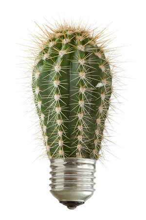 Green spiky cactus growing out of a bulb. Isolated on white background Standard-Bild