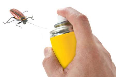 Sproeien insecticide op kakkerlak. Geà ¯ soleerd op witte achtergrond