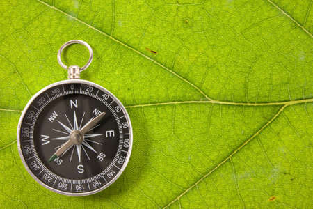 Compass on the leaf texture, symbolizing tourism in a nature Stock Photo - 15576958