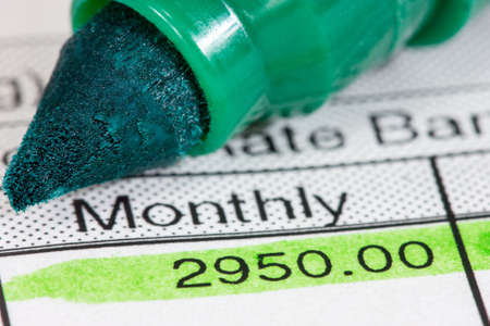 Green marker and  payslip with monthly wage Stock Photo - 17208295