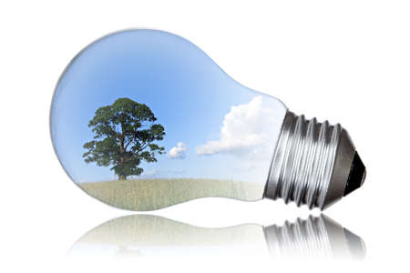 Summer landscape with tree in light bulb symbolizing green energy  photo