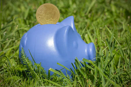 coinbank: Blue piggy bank with coin on the green grass Stock Photo