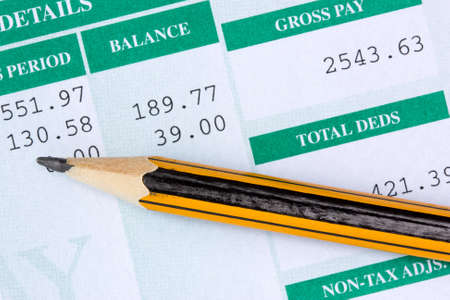Pencil with the statement of payroll details