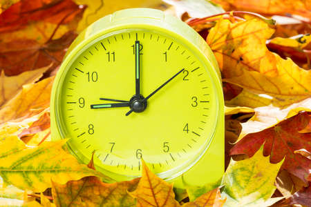 back in an hour: Alarm clock on autumn leaves. Time change concept. In autumn we change clock one hour back.