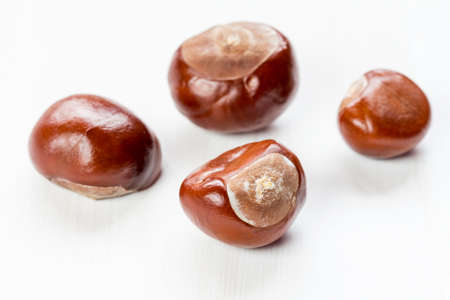 conkers: Fruit chestnut on a white wooden background