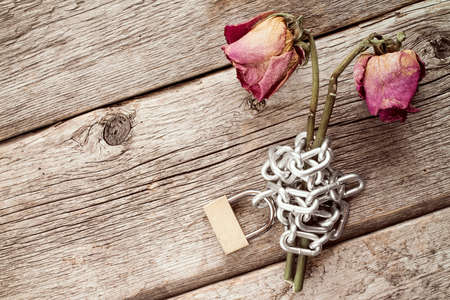 faded: Two old chained roses symbolize endless love
