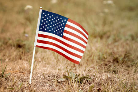 Small United States flag in the ground