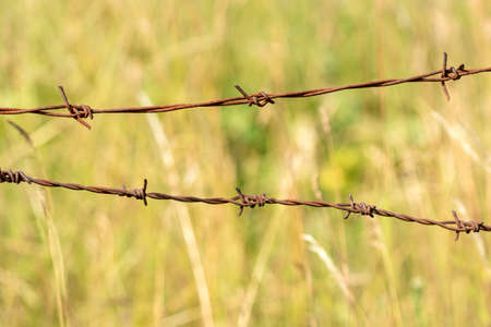 Close up old barbed wire fence Stock Photo