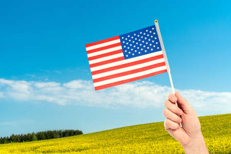 Hand with american flag on summer field background