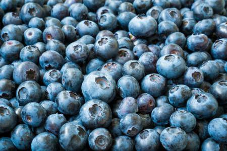 Close-up of organic Vaccinium Berries, fruity blue background