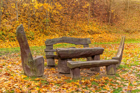 Outdoor wooden park furniture during the autumn season Imagens