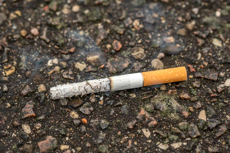 Cigarette butt thrown on the pavement. Concept for DO NOT LITTER