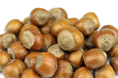 cobnut: Hazelnuts also called cob or filbert nuts. Stock Photo