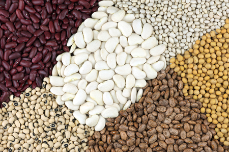 clockwise: Dried Butter beans,with clockwise from left, top, Red Kidney beans also known as Red Giant, Haricot or Navy beans, Soya beans, Pinto beans and Black Eyed beans also called Black Eyed peas. Stock Photo