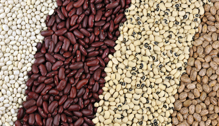 cow pea: Dried beans, from left, Haricot or Navy beans, Red Kidney beans also known as Red Giant, Black Eyed beans also called Black Eyed peas and Pinto beans. Stock Photo