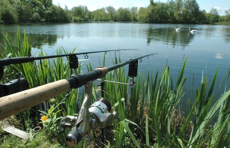 Freshwater angling with rods beside a lake, Norfolk, UK.