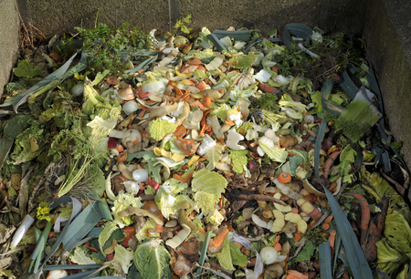 Garden compost heap with kitchen food waste, vegetables, fruit peel and green refuse. Stock Photo