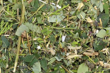 woodchips, 뿌리 덮개로 사용하기 위해 파쇄 된 우디 브라운 및 그린 정원 쓰레기를 파쇄하거나 퇴비를 통해 재활용하고 토양 개량제로 사용. 스톡 콘텐츠