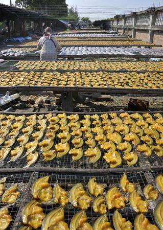 Słońce suszarnicza ryba przy rynkiem w Tajlandia. Zdjęcie Seryjne