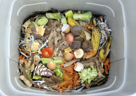 Inside a wormery with vegetable, fruit, general kitchen food waste and shredded newspaper.