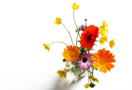 Beautiful bouquet of wild flowers, isolated on white background