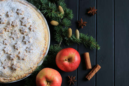Homemade american traditional holiday pie. Apple pie decorated with stars, cinnamon, red apple, star anise, lights and fir branch in dark background Stok Fotoğraf