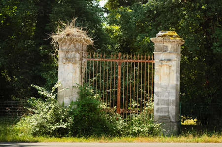 Old rusty portal covered with bushes. Stock Photo