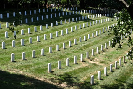 Arlington National Cemetery Stock Photo - 9886009