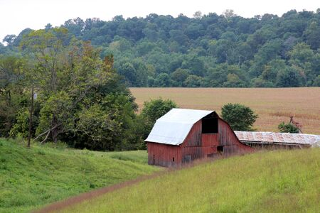 old red barn: Old faded barn