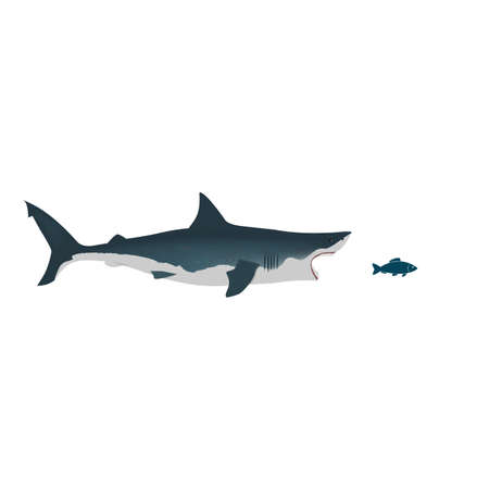 Shark with open mouth and petite fish. Flat isolated vector illustration on a white background.