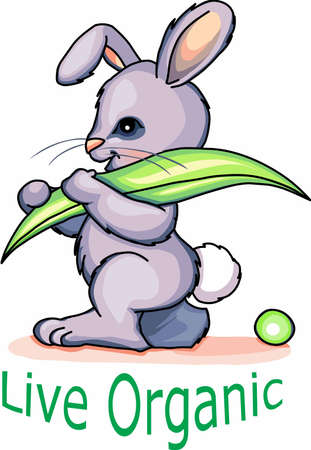 Enjoy having a rabbit in your garden experience with these designs . Stock Illustratie