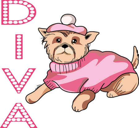 Everyone loves to spoil their puppy.  Get this diva dog for a friend.  Its so cute.