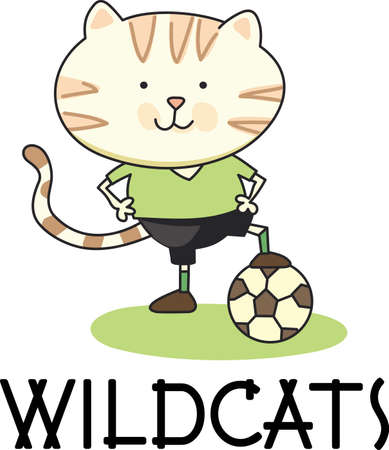 pussycat: Soccer is a very active sport.  The goalie must stay focused on the track the ball may go.  This design is perfect for the special goalie of the team.
