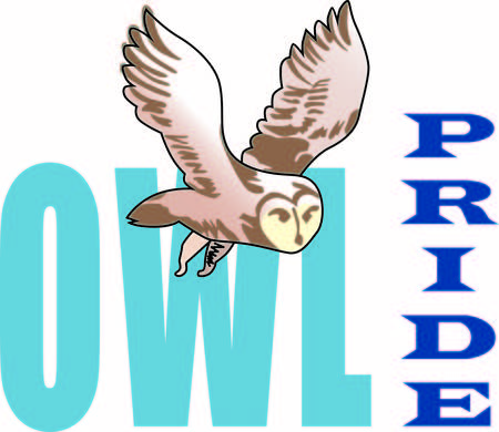 bird of prey: Show your team spirit with this Owl.  Perfect on a shirt or jacket. Everyone will love it!