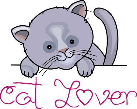 I gattini amano giocare e nascondere. Dare a questo progetto per un nuovo proprietario gattino. Che lo ami! Archivio Fotografico - 44925018