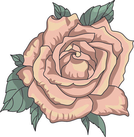 Im so glad I picked you.  A beautiful rose to give to a loved one.  A perfect gift for Valentines Day.