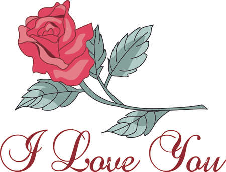 long stem: Im so glad I picked you.  A beautiful rose to give to a loved one.  A perfect gift for Valentines Day.