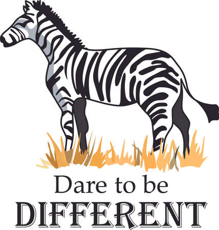be different: The zebra dares to be different in the African safari.  Get these designs to inspire originality to add to a shirt.