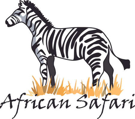 originality: The zebra dares to be different in the African safari.  Get these designs to inspire originality to add to a shirt.