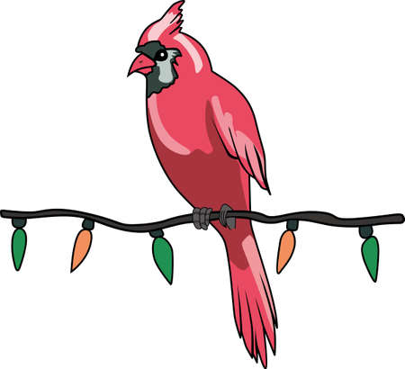 passerine: A Christmas Cardinal sitting on a string of lights is a perfect design to give to the birder in your family.