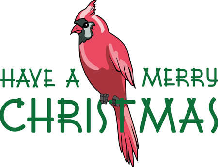 songbird: A Christmas Cardinal sitting on a string of lights is a perfect design to give to the birder in your family.