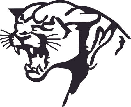 mountain lions: Time to cheer for the team with this Panther mascot design.  A perfect design for all the fans from Great Notions. Illustration