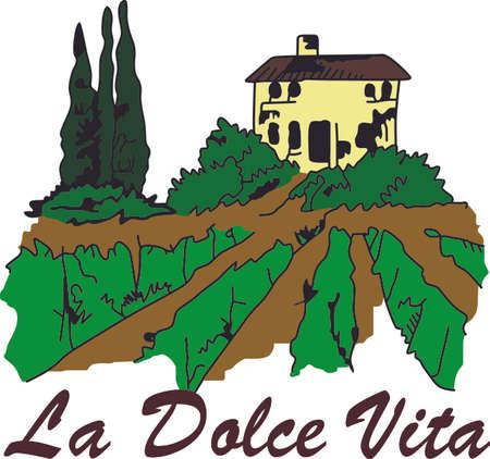 Quel est votre vin préféré Rouge, blanc ou rougir vins sont parfaits pour votre prochaine fête de Bunco. Ils vont adorer! Banque d'images - 44965068