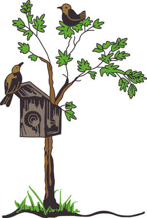 bird watcher: A bird watcher loves to watch birds everywhere they go.   This design is a perfect gift for the birder you know.