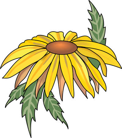 aster: When someone gets sick, send them some flowers.  This is perfect for them to remember your kind thoughts always.  They will love it!