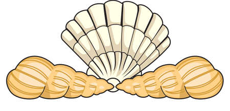 This cute little shell is perfect to take to the beach or perfect for childs room.