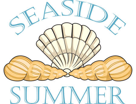 summer's: This cute little shell is perfect to take to the beach or perfect for childs room.
