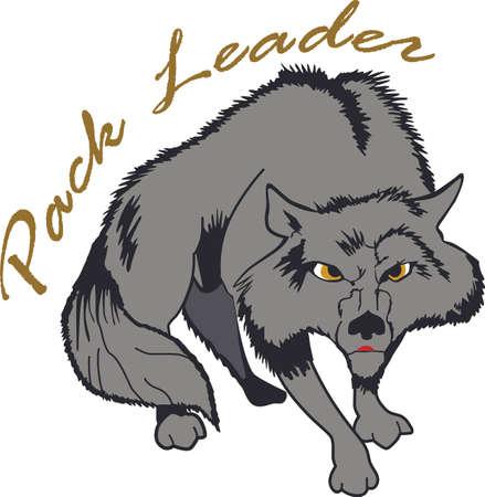 De sterkte van de wolf is het pak en de kracht van het pakket is de wolf. Stockfoto - 45026900